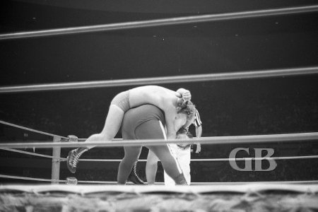 Gorilla Monsoon manages to escape from the grips of the Abdominal Stretch
