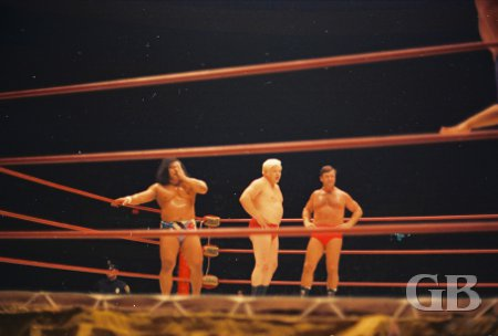 Peter Maivia, Ray Stevens, and Ed Francis stand ready to do battle